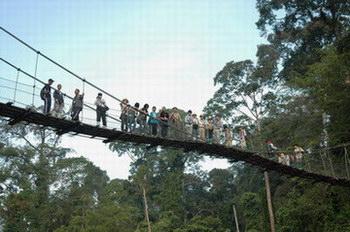 bridge_boru.jpg